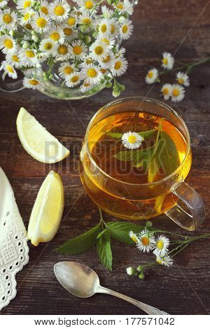 Summer Tea Party: Herbal tea with mint and camomile. Toned image