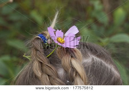 portrait of a cute little girl with tresses and the flowers in the garden