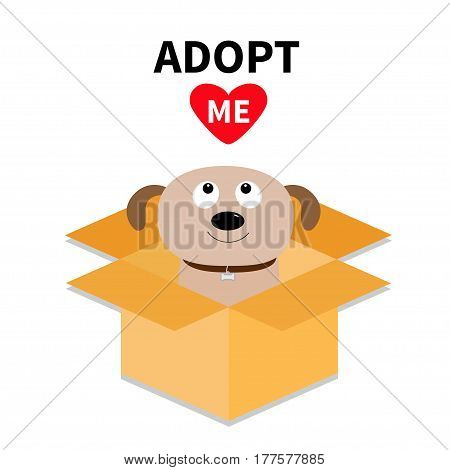 Adopt me. Dont buy. Dog inside opened cardboard package box. Pet adoption. Puppy pooch looking up to red heart. Flat design style. Help homeless animal concept. White background. Isolated. Vector