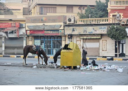 GIZA, CAIRO, EGYPT - NOVEMBER 16, 2016:  Rubbish-bin and garbage around