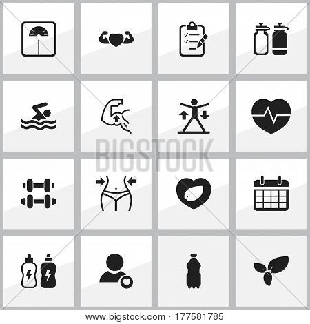 Set Of 16 Editable Exercise Icons. Includes Symbols Such As Leaf In Heart, Questionnaire, Hand Barbell. Can Be Used For Web, Mobile, UI And Infographic Design.