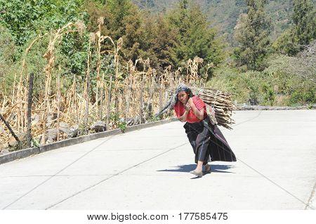 San Marcos de la Laguna, Guatemala - 8 February 2014 Maya woman carrying pieces of wood for heating their home