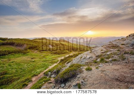 Majestic sunset in the mountains landscape. pine trees and rocks in the foreground, beautiful background