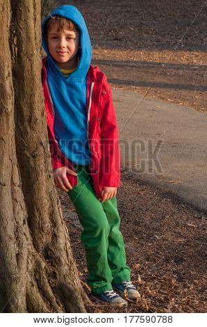 Cute boy standing in a park under a tree