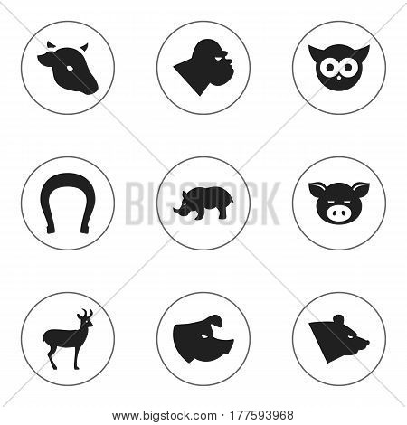 Set Of 9 Editable Zoo Icons. Includes Symbols Such As Reindeer, Grizzly, Talisman And More. Can Be Used For Web, Mobile, UI And Infographic Design.