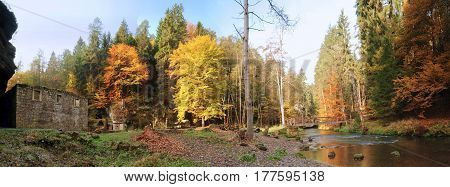 Panorama of ruin Dolsky mill and autumn beautiful colored forest