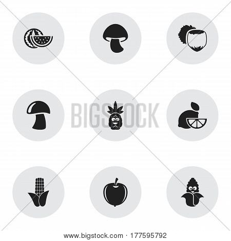 Set Of 9 Editable Food Icons. Includes Symbols Such As Watermelon, Plum, Filbert And More. Can Be Used For Web, Mobile, UI And Infographic Design.