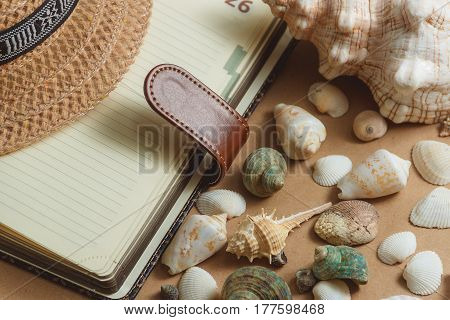 many seashells on light background with notebook. flat view. travel concept