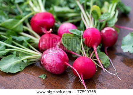 Fresh Crispy Red Radishes At Farmers Market
