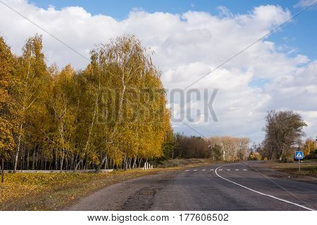 Road and autumn trees against the blue sky