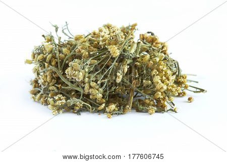 Pile of dried common yarrow isolated on white background