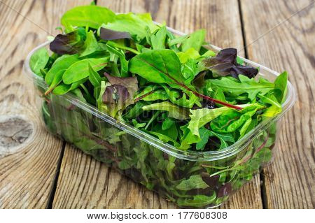 Healthy eating of arugula, mitsuna, chard, red mustard in plastic packing. Studio Photo