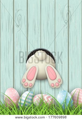 Easter motive, white bunny bottom and easter pink and blue eggs and fresh grass on blue wooden background, vector illustration, eps 10 with transparency and gradient meshes