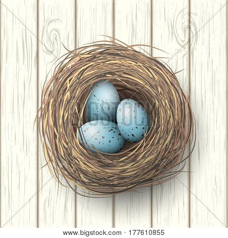 Nest with spotted blue eggs on white wooden background, vector illustration, eps 10 with transparency and gradien meshes