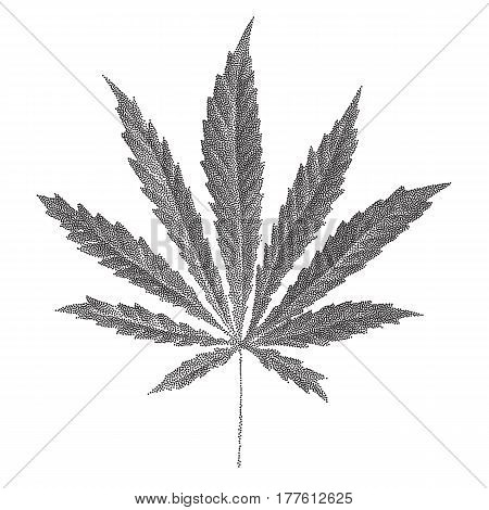 Vector illustration of dotted Cannabis sativa leaf in old style. Marijuana hemp leaf isolated on white background. Realistic illustration of plant. Stylized dotted leaves.