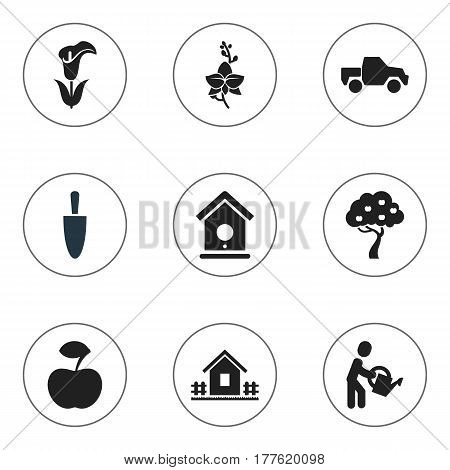 Set Of 9 Editable Plant Icons. Includes Symbols Such As Birdhouse, Blossom, Lily And More. Can Be Used For Web, Mobile, UI And Infographic Design.