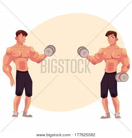 Man bodybuilder, weightlifter doing bicep workout, training arms with dumbbells in two positions, cartoon vector illustration with place for text. Male bodybuilder doing bicep workout