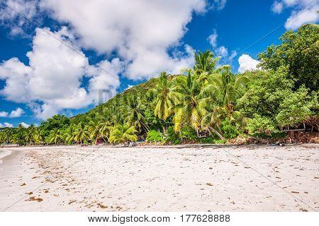 Beautiful beach at Seychelles, Praslin, Cote d'Or