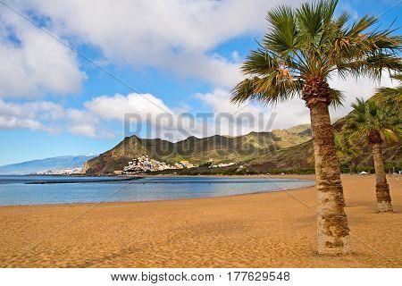 Canary Islands Tenerife. Beach las Teresitas with yellow sand. Canary Islands