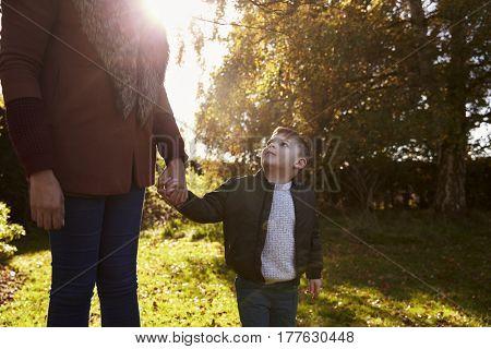 Boy Holding Mother's Hand On Autumn Walk in Garden
