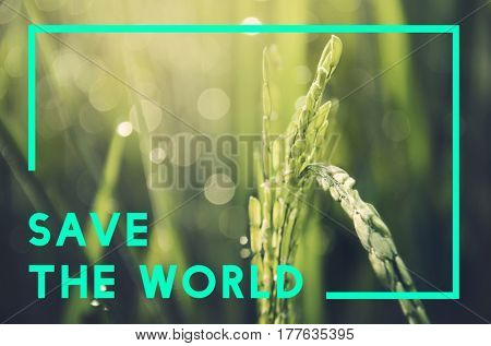 Save Earth Planet World Concept