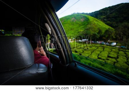 Tea plantations view from the car window. Cameron Highlands, Malaysia. Green hills landscape