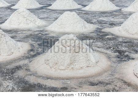 Piles of sea salt crystalline in field prepare for harvesting salt industry in Thailand.