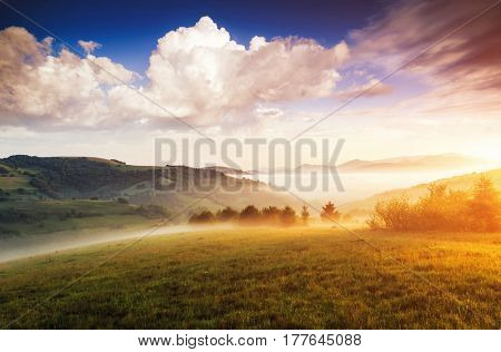 A look at the magic hills in the morning light. Dramatic day and gorgeous scene. Location place Carpathian, scenic wealth of Ukraine, Europe. Perfect vacation outdoors. Explore the world's beauty.