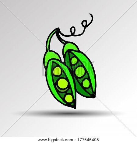 illustration food pea pod green vector organic healthy ingredient vegetarian