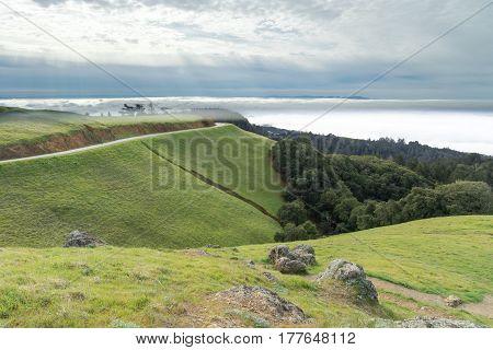 Mount Tamalpais Landscape in winter. Mount Tamalpais State Park, Marin County, California, USA.