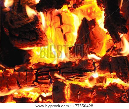 Firewood burning in a fireplace close up