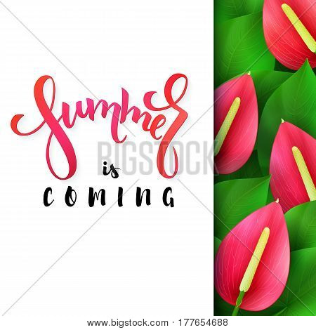 vector illustration of hand lettering poster - summer is coming with paper sheet on a background of blooming anthurium.