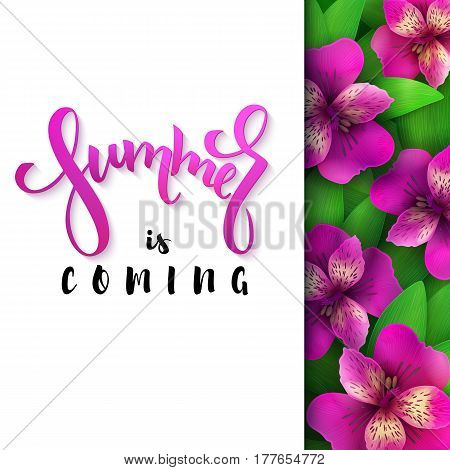 vector illustration of hand lettering poster - summer is coming with paper sheet on a background of blooming alstroemeria.