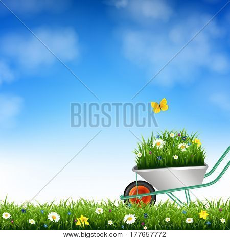 Garden Wheelbarrow And Grass
