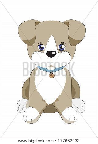lovely little puppy brown with a medallion and a collar