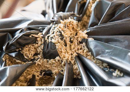 Fly larvae and black garbage bags, Larvae Hermetia illucens,