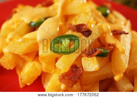 Tasty cheese fries with sliced pepper and fried bacon on plate, closeup