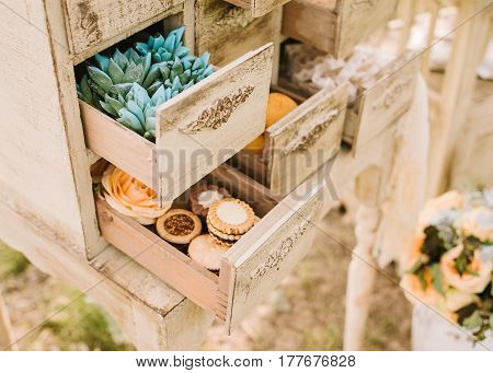 wedding decor outdoor. green plants - succulents and sweet cookies in small boxes of a vintage dresser close up. Ancient white commode bureau with paint peeled stucco mouldings roccoco elements.