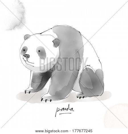 Panda. Watercolor animal drawing collection