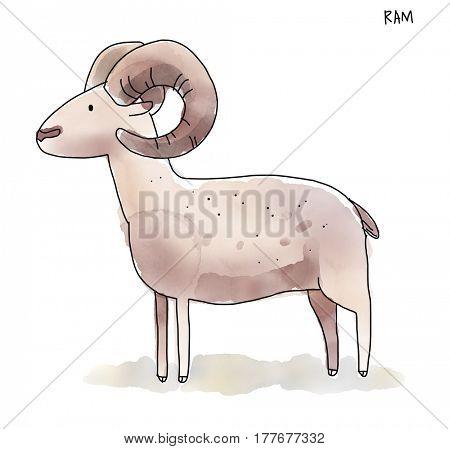 Ram, Watecolor Animal illustration set