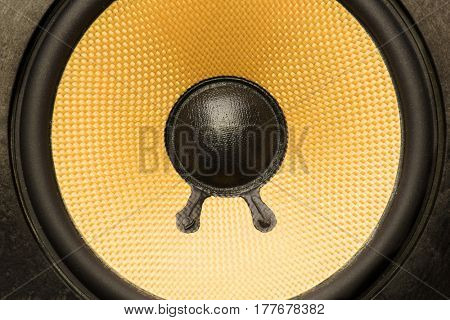 Close up of bare audio speakers with amber colored fiber glass or aramid fiber cone.
