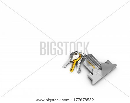 House key on a house shaped keychain. 3d illustration