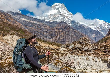Bearded Hiker in Fedora Hat with Backpack and walking Sticks staying on Footpath and looking up