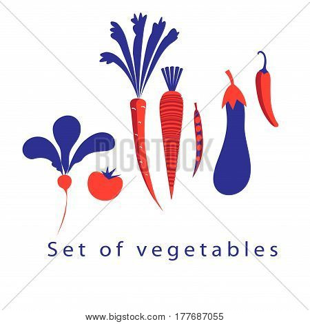 Graphic set of different vegetables on a white background