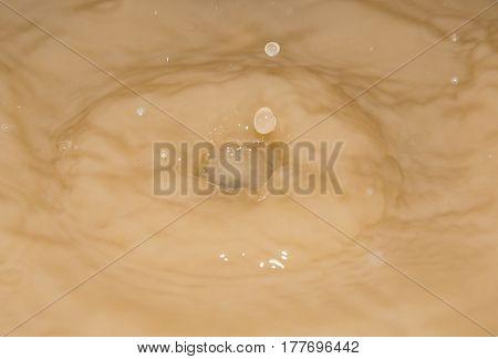 splashing in the muddy water. macro . A photo