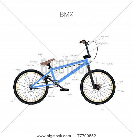 BMX bicycle infographic elements and parts isolated.