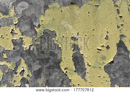 Detail of a Flaking paint on galvanized metal