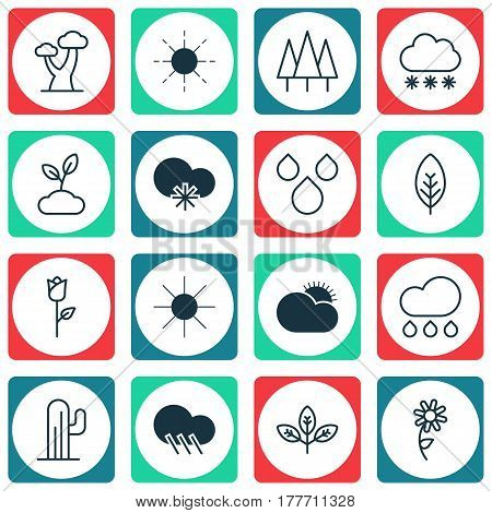 Set Of 16 World Icons. Includes Cold Climate, Forest, Tree Leaf And Other Symbols. Beautiful Design Elements.
