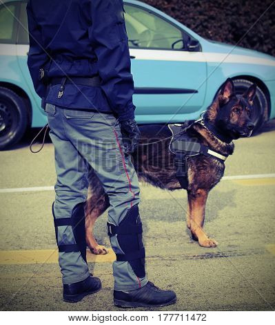 police dog while patrolling the city before the football game to prevent terrorist attacks