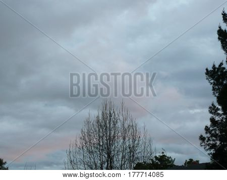 Overcast fluffy clouds framed by forest in San Jose sunset starting